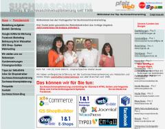 Webdesign mit Suchmaschinenoptimierung-alte-seite